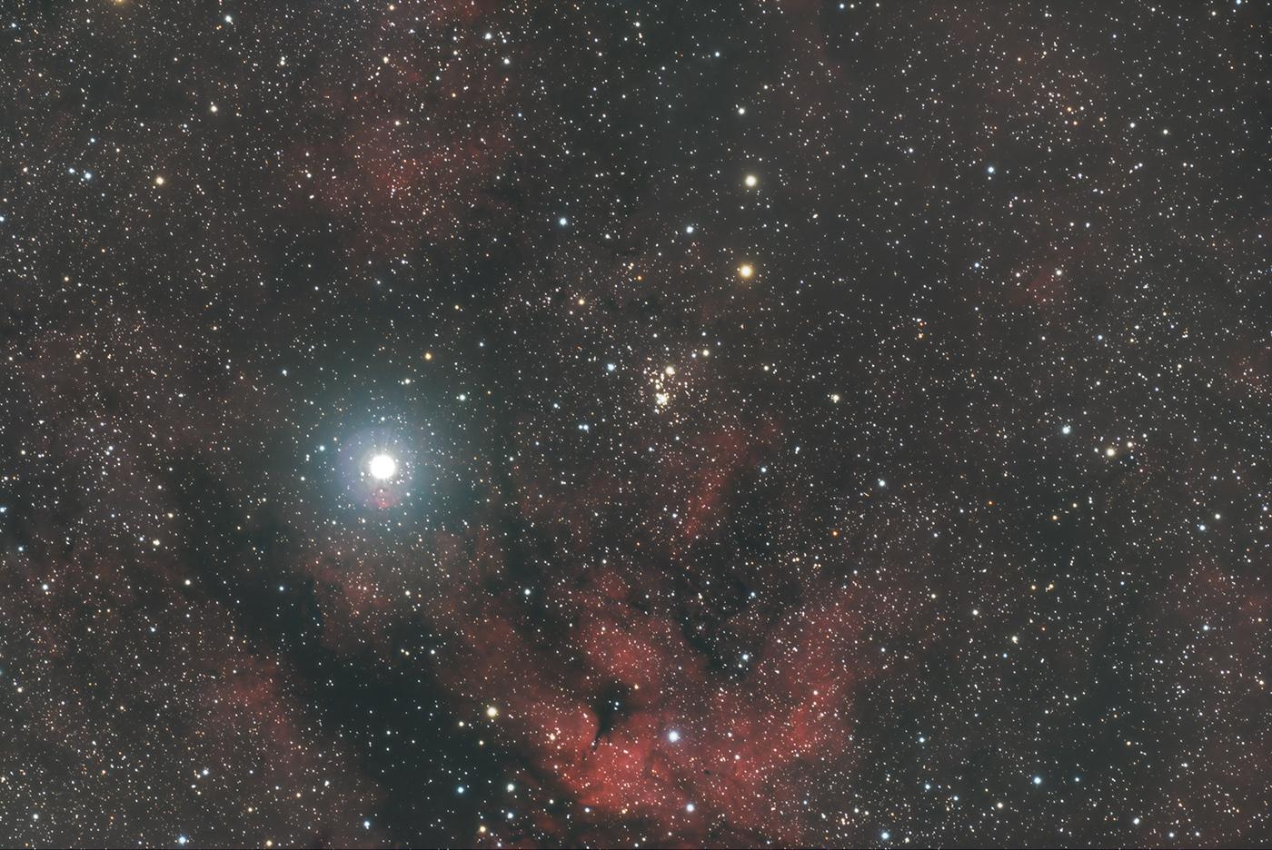 Nébuleuses Gamma Cygne (IC 1318) - Cygne  - Image : Christophe Mele